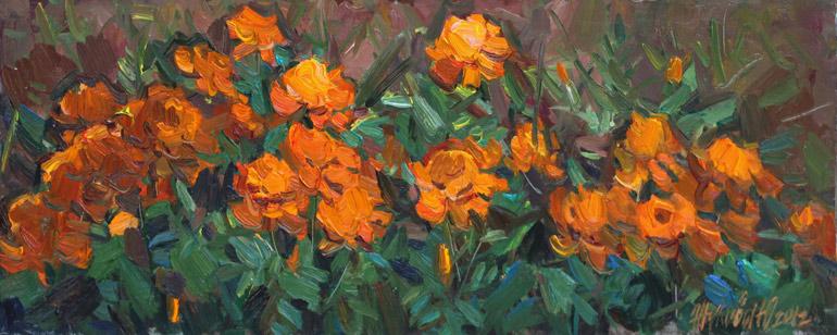 Сад желтые цветы оранжевые яркие